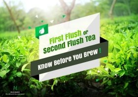 First-Flush-or-Second-Flush-Tea-Know-Before-You-Brew