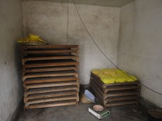03_the_yellowing_room