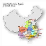 tea-map-china-lg_1024x1024