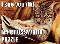 i-see-you-did-my-crossword-puzzle